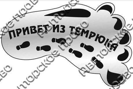"""Магнит зеркальный 1-цветный """"След- привет из"""" серебро Темрюк арт FS000083 - фото 36564"""