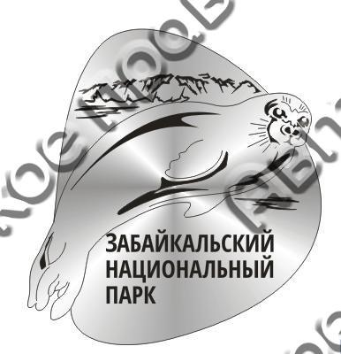Магнит Нерпа из Вашего города зеркальный серебро - фото 36941