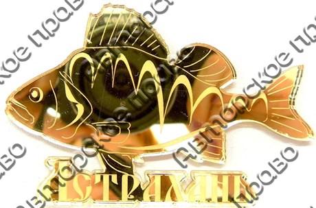 Магнит Рыба Окунь с названием Вашего города зеркальный золото - фото 37273