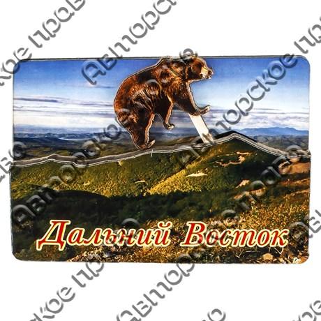 Магнит с подвижной деталью №3 Мишка с логотипом города Дальний Восток арт 2575 - фото 53533