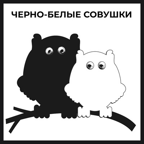 Магнит черно-белый с подвижными глазками Совы вид 1 - фото 55547