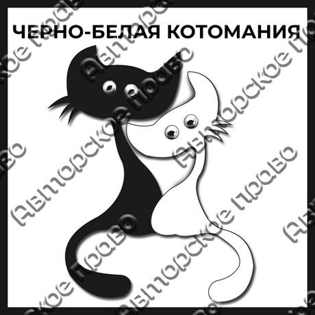Магнит черно-белый с подвижными глазками Котейки вид 1 - фото 55582