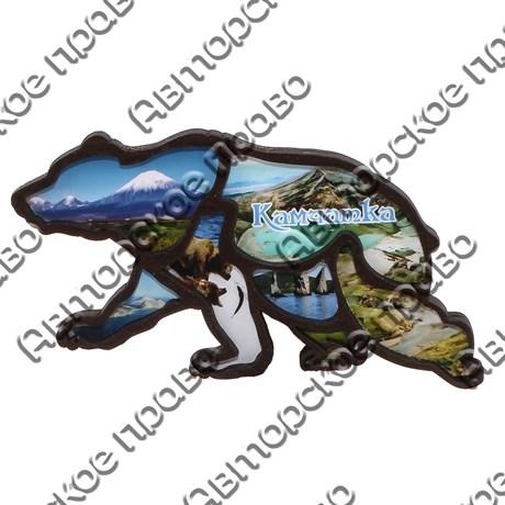 Магнит на холодильник силуэт Медведь вид 1 с символикой Камчатки - фото 72254