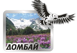 Магнит Орел с видами Вашего города Прямоугольный зеркальный серебро