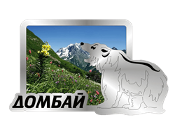 Магнит Медведь 1 с видами Вашего города Прямоугольный зеркальный серебро