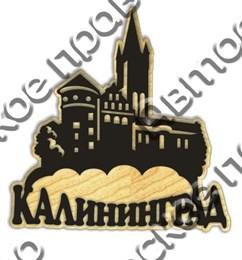 магнит дерево пластик 1 Калининград