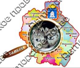 магнит цветной карта с лупой 07 Тамбов