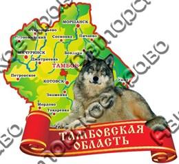 магнит цветной карта с волком Тамбов
