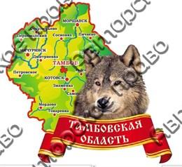магнит цветной карта 03 Тамбов