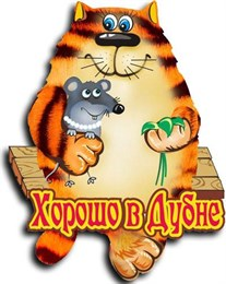 """Магнит """"Кот с мышкой"""" г.Дубна 2"""