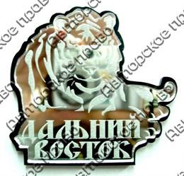 Купить магнитик зеркальный Дальний Восток Тигр