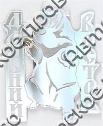 Купить магнитик зеркальный Дальний Восток Бурый мишка серебро