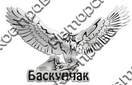 Магнит зеркальный Орёл Баскунчак
