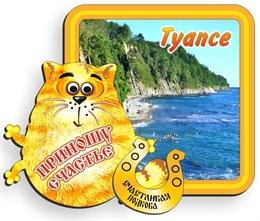 магнит цветной2-х слойный Кот добродей с картинкой Туапсе