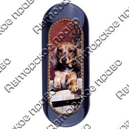 Футляр для очков Собаки вид 3 арт 25437