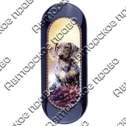Футляр для очков Собаки вид 4 арт 25438