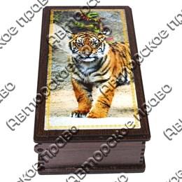 Купюрница со смолой Тигры вид 1