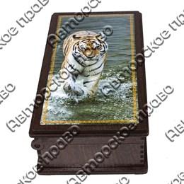 Купюрница со смолой Тигры вид 2