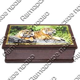 Купюрница со смолой Тигры вид 3