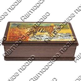 Купюрница со смолой Тигры вид 4