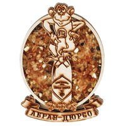 """Магнитик  с янтарём """"Овал с обезьяной"""" с символикой Вашего города"""