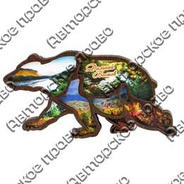 Магнитик 2-хслойный Силуэт медведя вид 1 с символикой Вашего города