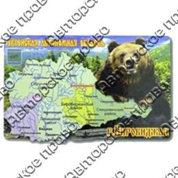 Магнит 2-хслойный Карта на форме с медведем с символикой Вашего города