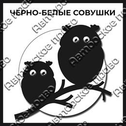 Магнит черно-белый с подвижными глазками Совы вид 2