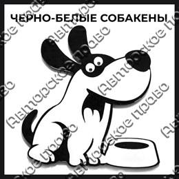 """Магнит акриловый серии """"Черно-белые с глазками"""" 27"""