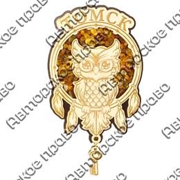 Магнит с янтарем и подвесной деталью Сова в ловушке с символикой Томска