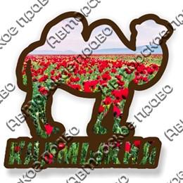 Магнит контурный Верблюд с символикой Калмыкии