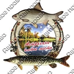 Магнит 2-хслойный Рыбы с видами Астрахани вид 1