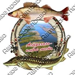 Магнит 2-хслойный Рыбы с видами Астрахани вид 2