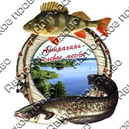 Магнит 2-хслойный Рыбы с видами Астрахани вид 3