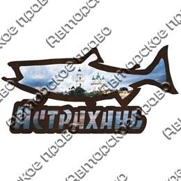 Магнит контурный Щука с символикой Астрахани вид 2