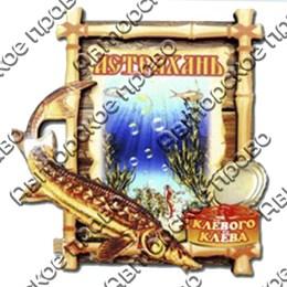 Магнит 2-хслойный Бамбук с осетром и символикой Астрахани