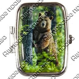 Таблетница прямоугольная Медведь вид 1