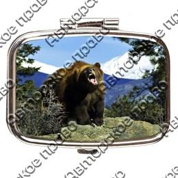 Таблетница прямоугольная Медведь вид 2