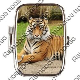 Таблетница прямоугольная Тигр вид 2