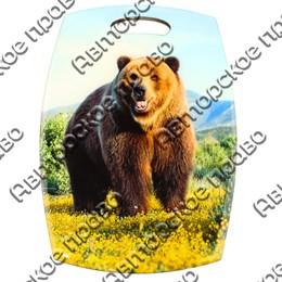 Доска со смолой Медведь вид 3