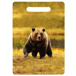 Доска со смолой Медведь вид 4