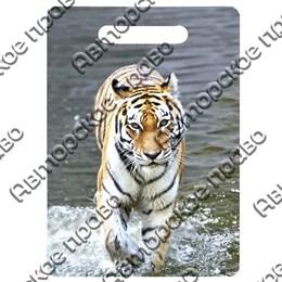 Доска со смолой Тигр вид 3