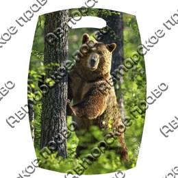 Доска со смолой Медведь вид 5
