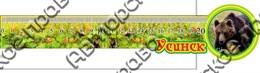 Линейка цветная Медведь с символикой Усинска