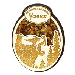 Магнит с янтарем Медведь с символикой Усинска