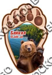 Магнит Лапа медведя с видами Байкала