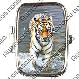 Таблетница прямоугольная Тигр вид 4