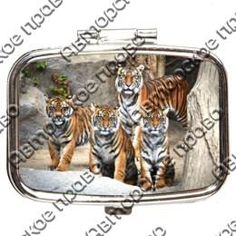 Таблетница прямоугольная Тигры