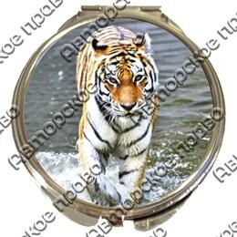 Зеркало серебро Тигры вид 1