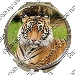 Зеркало серебро Тигры вид 2
